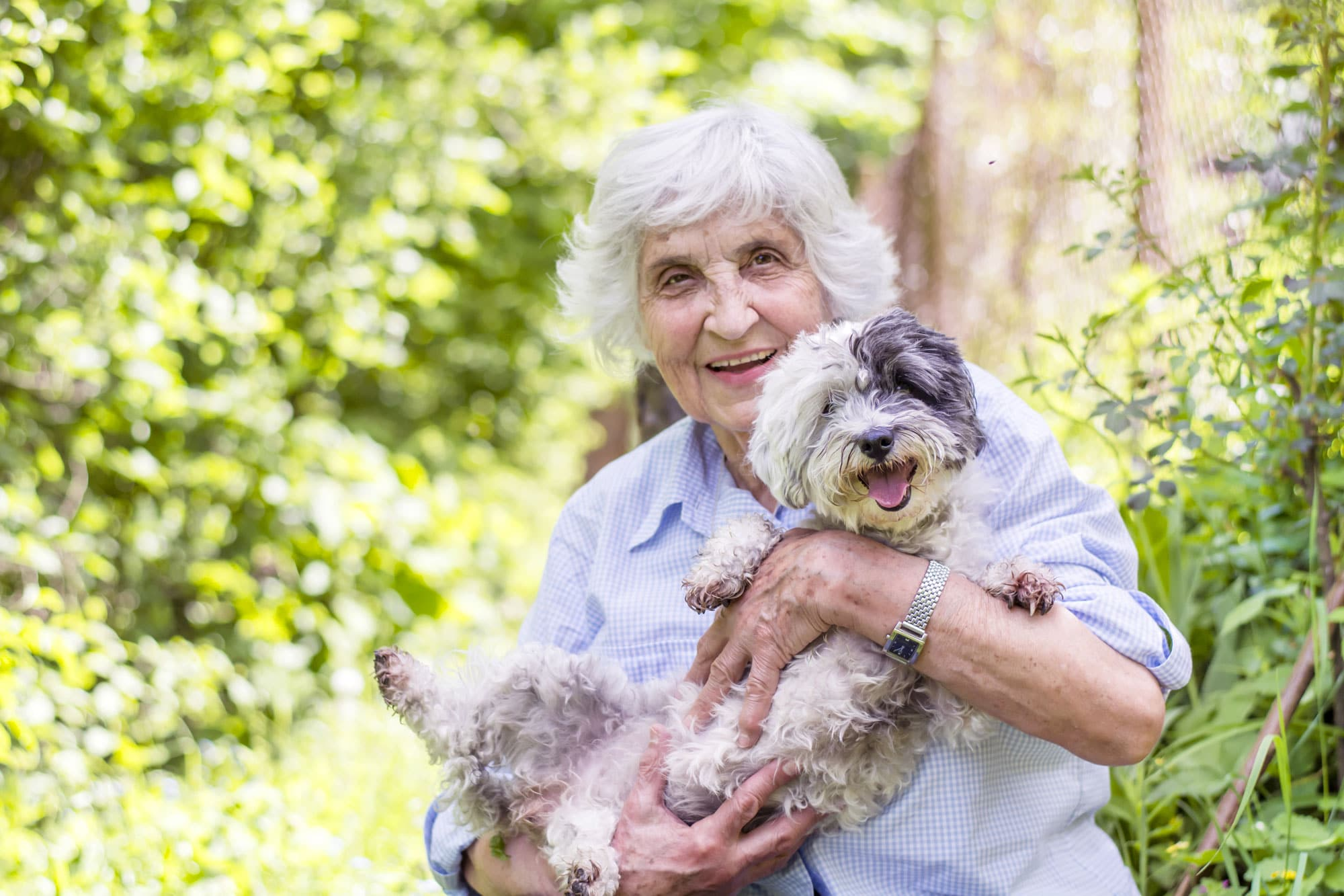 older-lady-with-dog